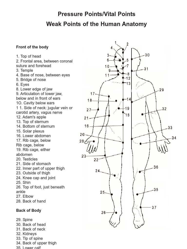 Pressure Points Vital Points And Weak Points Of The Human Anatomy