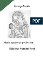 Santiago Martín - María, camino de perfección