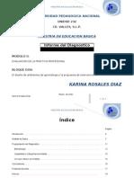 Informe del diagnostico. Kari MEB 2
