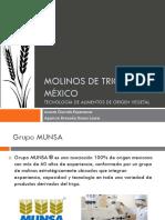 Molinos-de-trigo-México