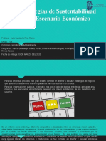 4.8 Estrategias de sustentabilidad para el escenario economico