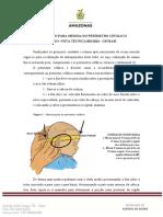 Avaliação do Perímetro Cefálico - RN