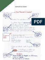 Normas de Presentacion Del Cuaderno