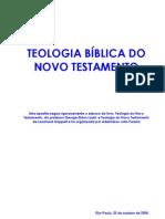 Apostila de Teologia Bíblica do Novo Testamento