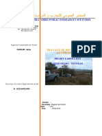 rapport oued negro_doc_270410