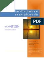 Le Chef d'Orchestre Et Sa Symphonie Des Appal Aches