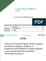 19) Lipidi