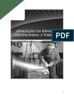 Livro de Vibracao Ocupacional_2015_RTX
