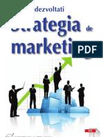Cum Sa Dezvoltati Strategia de Marketing