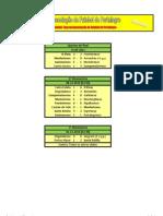 Resultados dos Quartos de Final da Taça Distrital da AF Portalegre em Futebol