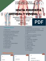Insuficiencia Periferica Arterial y Venosa