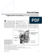 Trigeminal nerve abnormality