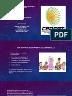 Desarrollo Infantil y Competencias en La Primera Infancia (1)