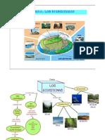 Tema 6.- Los Ecosistemas