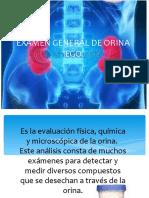 EXAMEN GENERAL DE ORINA 2