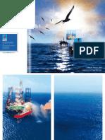 PVD's annual report 2008