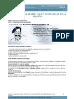 Funcion de Las plantas Aromaticas y Medicinales en La Huerta