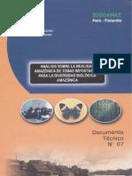 analisis sobre la realidad amazonica