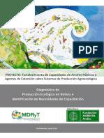 Diagnostico Produccion Ecologica Final