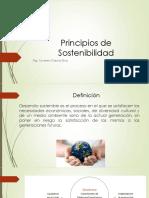 Principios de Sostenibilidad
