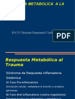 Respuesta metabolica Presentacion