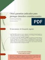 7_Otras_garantias_judiciales_para_proteger_derechos_constitucion