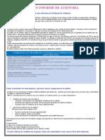 Sintesis Del Nuevo Informe de Auditoria - Copia