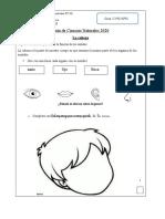 1°-básico-ciencias-Guía-de-trabajo-los-sentidos