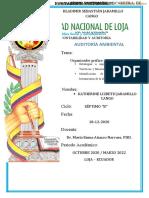 ORGANIZADOR GRÁFICO (REPORTE N 3).