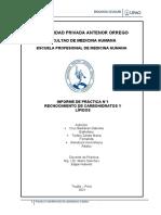 Semana 1 Practica 1 Informe Práctica Carbohidratos Lipdos 2021-10 ESTO- EnFE - OBST-convertido