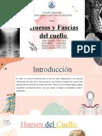Huesos y Fascia Del Cuello