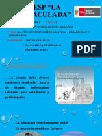 la educacion en america latina desarrollo y perspectiva, grupo