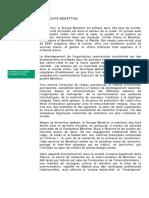 Benetton Group Fr