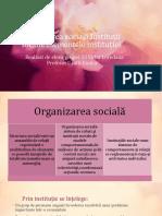 Organizarea socială