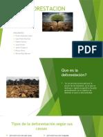 la deforestacion presentacion