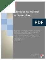 Métodos Numéricos con Assembler