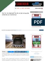 www_investiraucameroun_com_mines_1909_3615_de_l_or_du_diaman