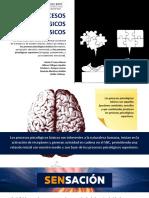 Procesos psicológicos básicos VF
