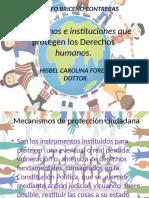 Instituciones Derechos Humanos (1)