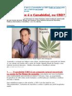 13 Carta Cannabis O QUE É CANABIDIOL  Abril de 2020