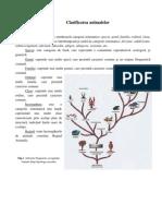 Zoologie Lp-GeografiaMediului