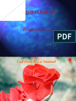 FloresdeAmistad
