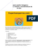 Puli (Perro Pastor Húngaro) - Descripción, Historia, Características de La Raza