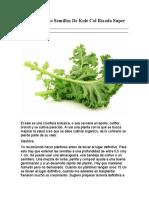 Manual Cultivo Semillas De Kale Col Rizada Super Alimento