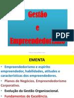 GESTAO+E+EMPREENDEDORISMO+2011