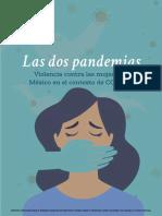 Violencia contra las mujeres en México en el contexto de la pandemia