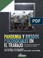 Neffa 2020 Pandemia-y-Riesgos-Psicosociales-en-el-trabajo-versioěn-definitiva