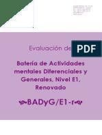 BADyG-E1-r