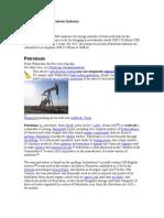 Future of India Petroleum Industry