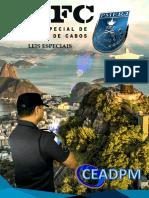Leis Especiais - Cefc 2019